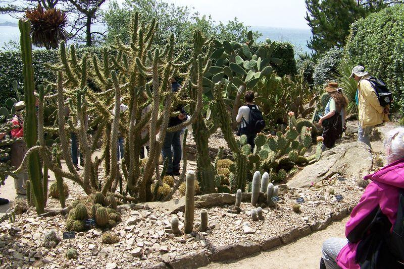 Ile de Batz, jardin George Delaselle