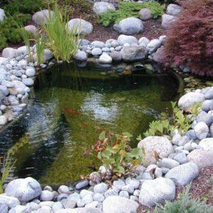 Bassin01