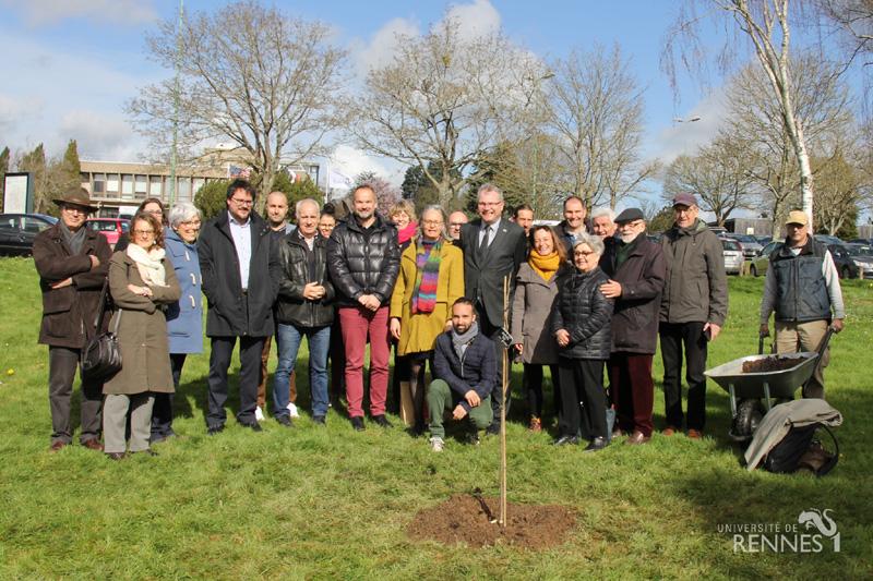 Société d'horticulture 35 plantant un pacanier ou noyer de pécan sur le campus de Beaulieu en commémoration de la Grande Guerre de 14-18