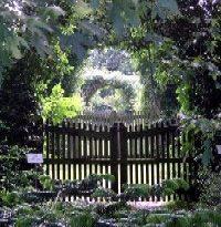 arboretum_kalmthout_original